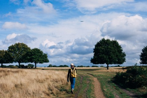 Photo by Clem Onojeghuo from Pexels https://www.pexels.com/photo/person-in-yellow-and-black-backpack-walking-on-green-grass-field-under-cloudy-blue-sky-during-daytime-211047/